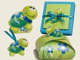 Collection tortue
